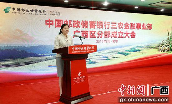广西壮族自治区人民政府副主席丁向群在邮储银行三农金融事业部广西区分部成立大会上讲话。