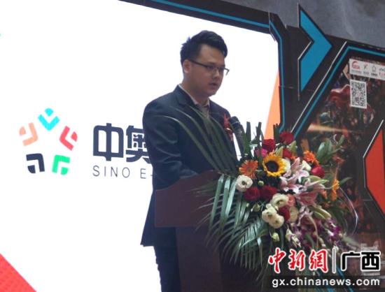 广西-东盟(中国)电子竞技产业园开园--中新网广08中国击剑名将图片