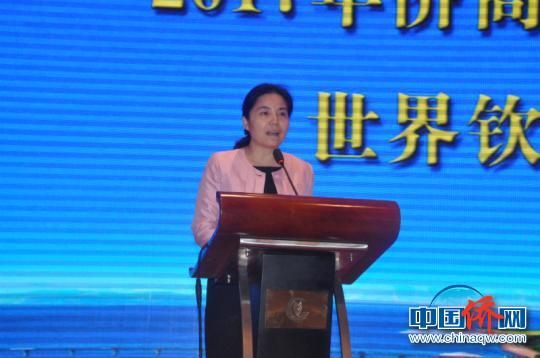 图为广西壮族自治区政府副主席丁向群致辞。 林浩 摄