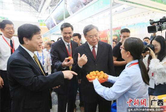 农产品展销会现场,融安县副县长陈静(右一)向广西壮族自治区副主席张秀隆(右二)推介融安金桔。韦荣军 摄