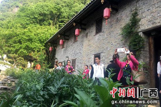 图为旅行社代表们考察阳朔特色民宿。阳朔县委宣传部提供。