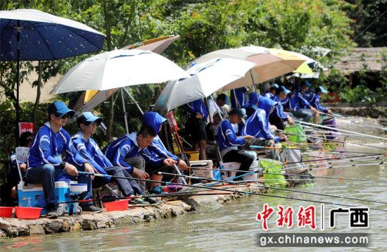 """6月9日,在融安县2018年""""职工杯""""休闲垂钓比赛现场,选手们在钓鱼。(覃庆和 摄)"""
