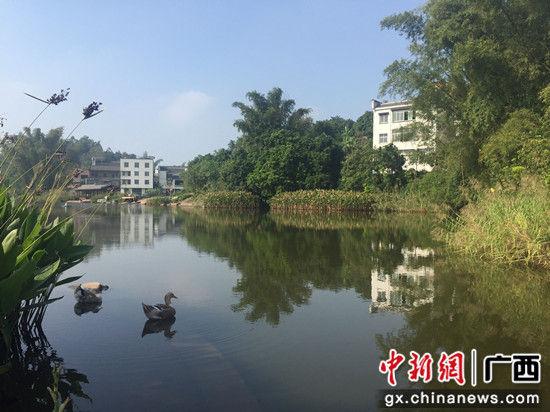 那蒙坡青山环绕,绿水相连。 钟欣 摄