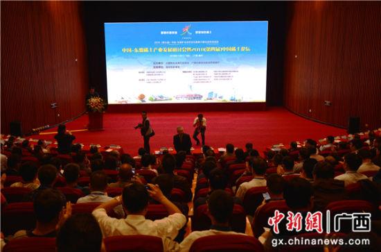 图为中国-东盟稀土产业发展研讨会暨2018(第四届)中国稀土论坛现场。林洁琪 摄