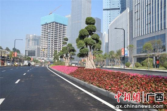 主体道路提升工程示范路段配合大庆改造绿化景观 蔡丽 摄