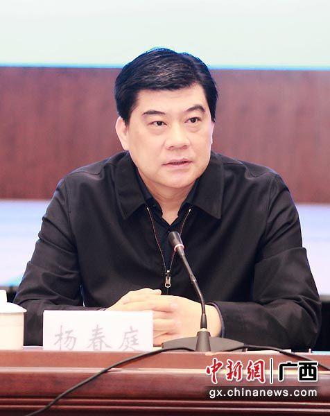 图为广西投资促进局局长、广西经济技术协作办公室主任杨春庭在会上发言。李有娇 摄