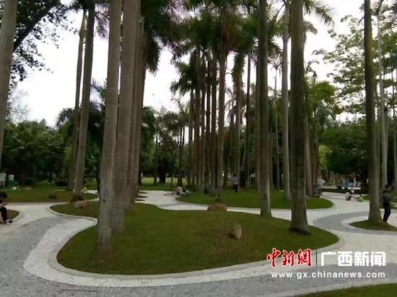 """广西南宁南湖公园将建成""""流淌的城市花园"""""""
