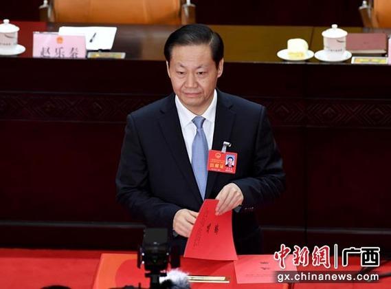 广西十三届人大一次会议举行第三次全体会议