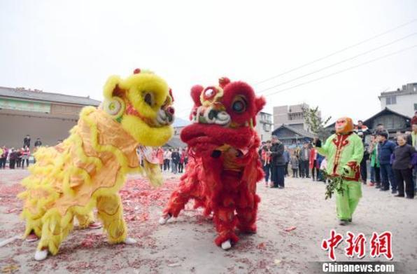 广西侗乡舞狮闹春 挨家挨户送祝福