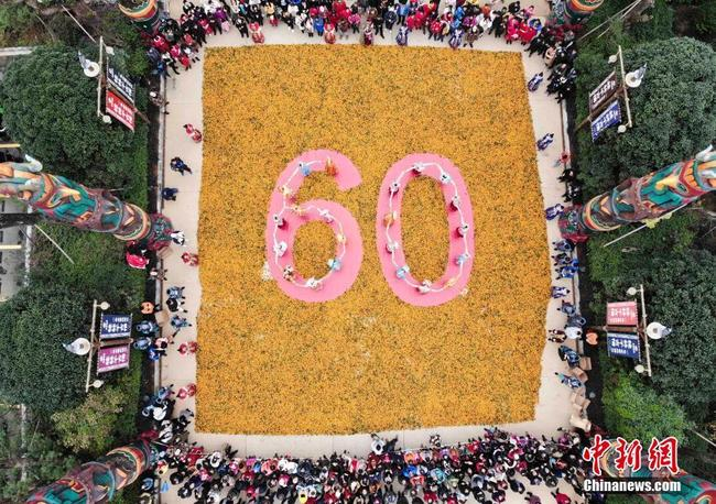 """广西桂林爱心柑橘拼""""60"""" 庆自治区成立60周年"""