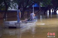 广西柳江柳州段洪峰过境 民众乘船出行