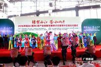 2016年桂台(梧州)茶产业创新研讨会开幕