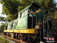 """南宁一农家乐""""火车""""迎客"""