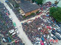 航拍广西老港口涉案车辆停车场 密密麻麻很壮观