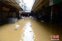 广西北部江河全面超警 部分县城受灾严重