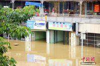 柳江广西柳州段半月内现三次洪峰