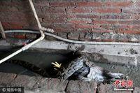 """广西2.6米蟒蛇闯民宅偷鸡 官兵2小时""""缉拿归案"""""""