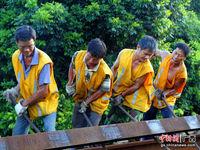 广西沿海铁路钦州工务段写实:烈日下的铁路换轨人