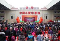 凭祥举办首届水果电商节暨中国—东盟水果城启动仪式