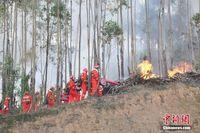 广西举行大规模森林消防实景演练