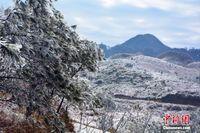 广西金秀大瑶山迎来入冬首场雾凇美景