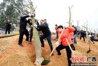 广西融安千名干部植树造林保护融江生态