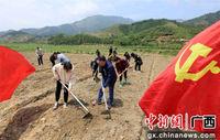 广西融安发展集体经济助力脱贫攻坚