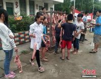 广西侗乡一小学为优秀学生发猪肉当奖品