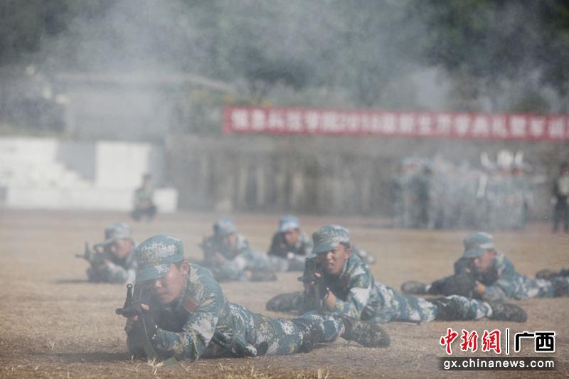 """桂林高校新生汇报""""战狼式""""军训成果"""