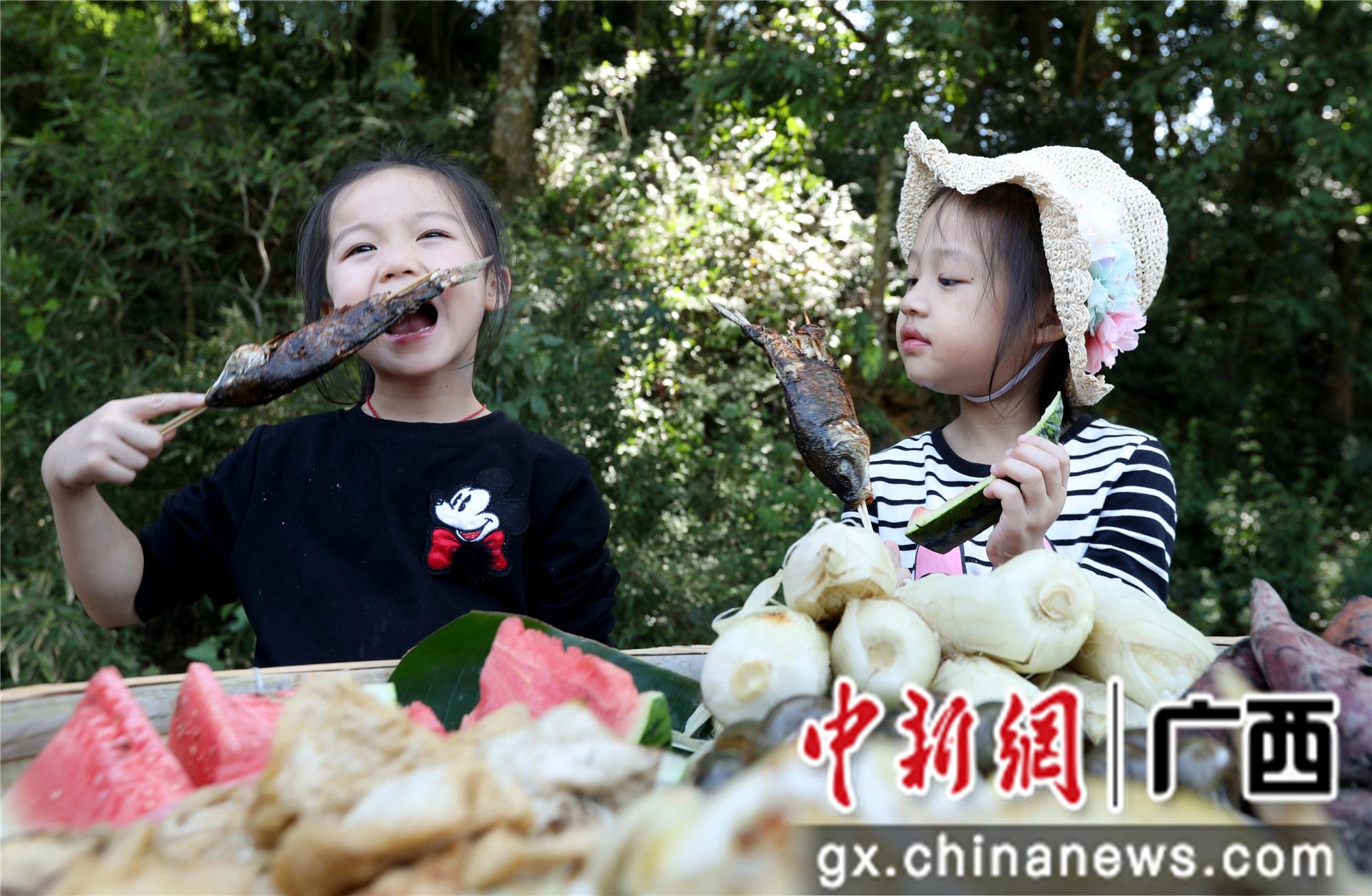 """广西融安:乡村旅游""""稻鱼螺"""""""