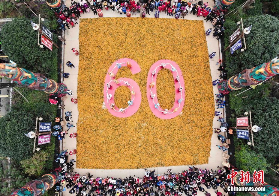 """88必发手机网页官网桂林爱心柑橘拼""""60"""" 庆自治区成立60周年"""