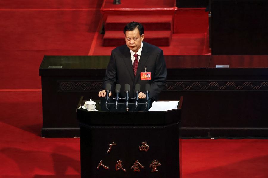 杨道喜作广西自治区人大常委会工作报告